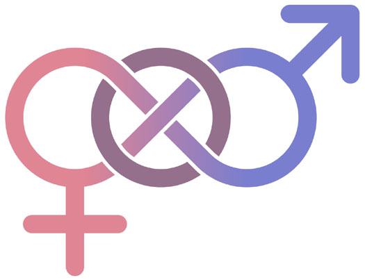 Mainstreaming Gender into Project Cycle Management – (20th August – 19th September 2019)